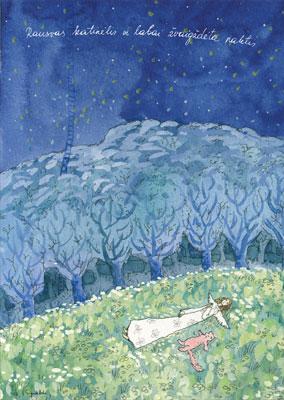 AM129/127 Rausvas katinėlis ir labai žvaigždėta naktis